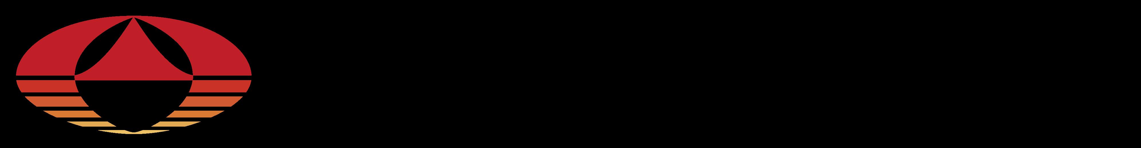 メタロ・バランス検査導入のご案内サイト